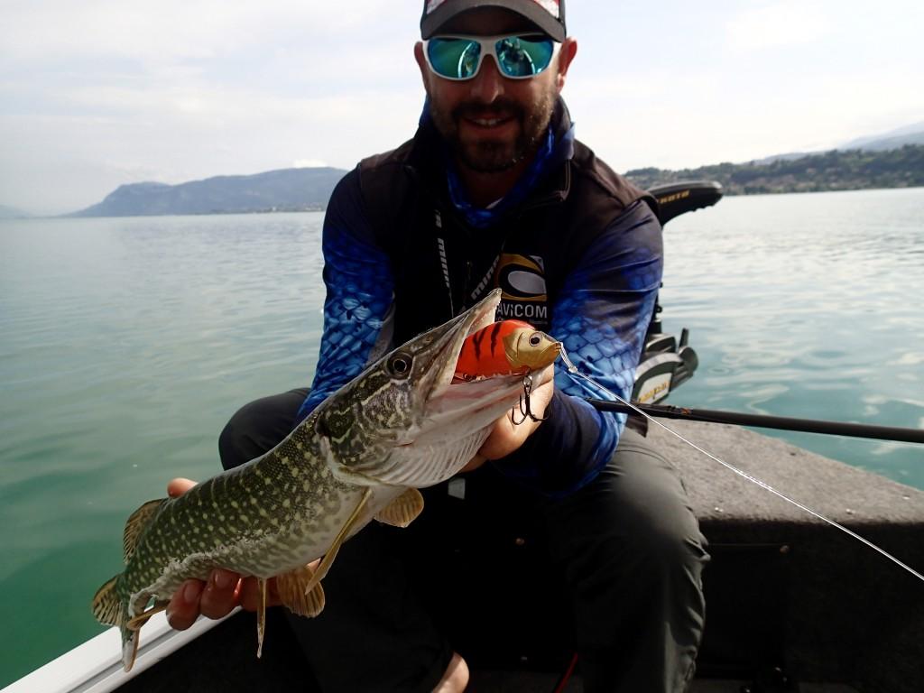 pêche au lac du Bourget